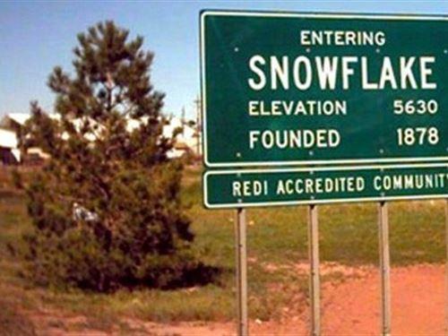 Lot in Snowflake to Build : Snowflake : Navajo County : Arizona