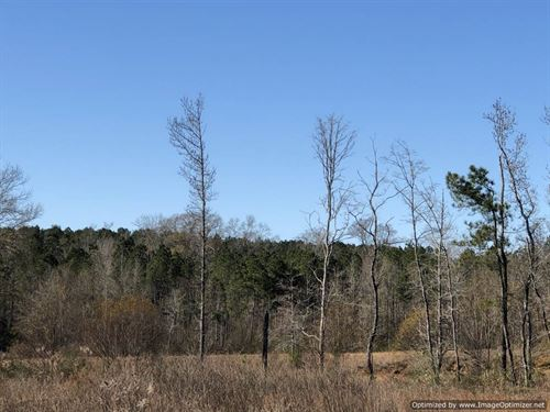 2.4 Acres Ready For Your Home : Brookhaven : Lincoln County : Mississippi