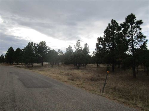 Mountain Country Club Lot With Mem : Alto : Lincoln County : New Mexico
