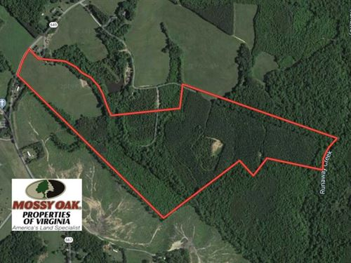 100 Acres of Hunting Land For Sale : Nathalie : Halifax County : Virginia