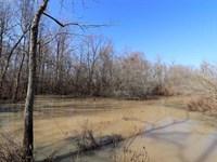 72.8 Acres & Deltaguille Lodges : Wynne : Cross County : Arkansas