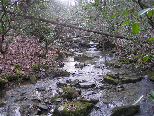 31.2 Acres, Creek, Woods : Dunlap : Sequatchie County : Tennessee