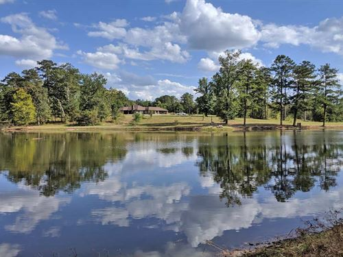 Headwater Tree Farm : Ramer : Montgomery County : Alabama