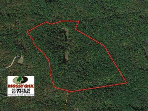 68 Acres of Hunting And Recreation : Buchanan : Botetourt County : Virginia