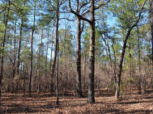 146 Acres in Autauga Co, Near Prat : Booth : Autauga County : Alabama