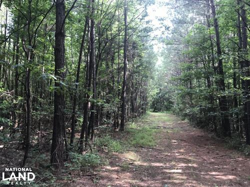 Hunter's Haven And Timber Investmen : Houston : Chickasaw County : Mississippi