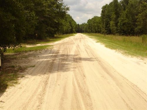 2.02 Acres in Lee, Florida : Lee : Madison County : Florida