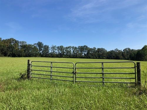 Land For Sale in North Florida : Monticello : Jefferson County : Florida
