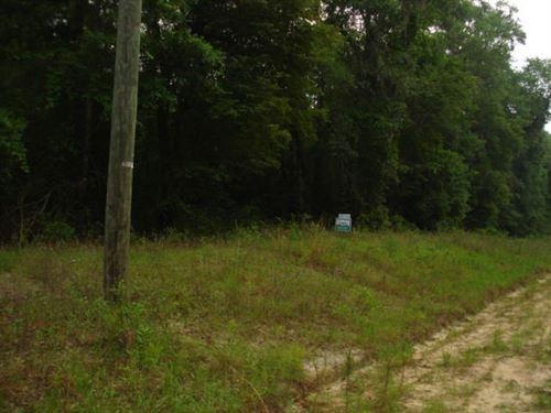 Vacant Land Suwannee County : O'brien : Suwannee County : Florida
