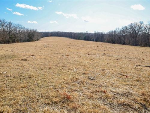 143 Acre Recreational Livestock : Belle : Maries County : Missouri