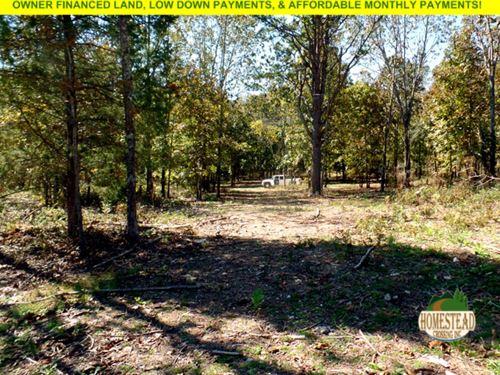 Winding Creek Bed & Stunning Views : Montier : Shannon County : Missouri