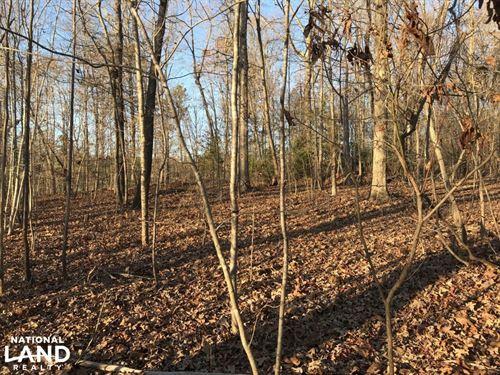 Sain Rd Timberland Tract : Mountain View : Catawba County : North Carolina