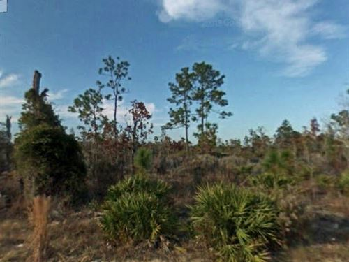 Great Lot For Tiny Home, No 304 : East Bronson : Levy County : Florida