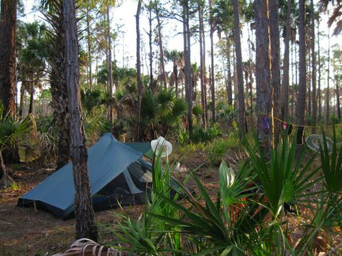 Flagler Estates Investment/Camping : Bunnell : Flagler County : Florida