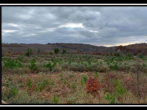 Shurtz Farm Tract 4 : New Plymouth : Vinton County : Ohio