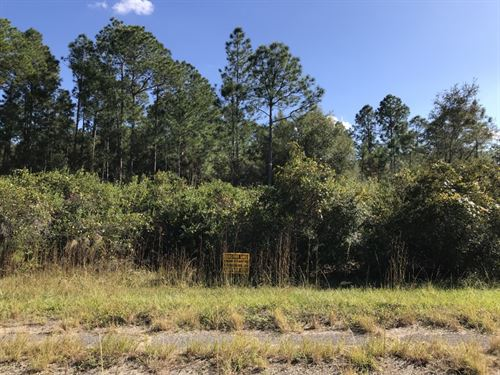 Your Own Land For $99 Down : North Port : Sarasota County : Florida