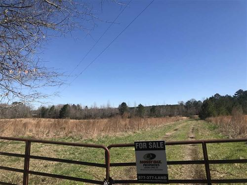 Excellent Hunting Recreation Land : Toomsuba : Lauderdale County : Mississippi