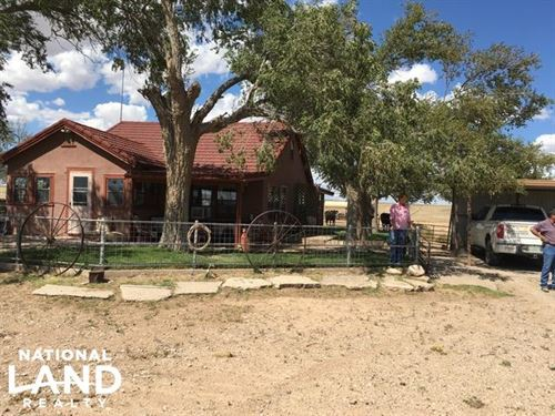 Macho Draw Ranch : Roswell : Chaves County : New Mexico