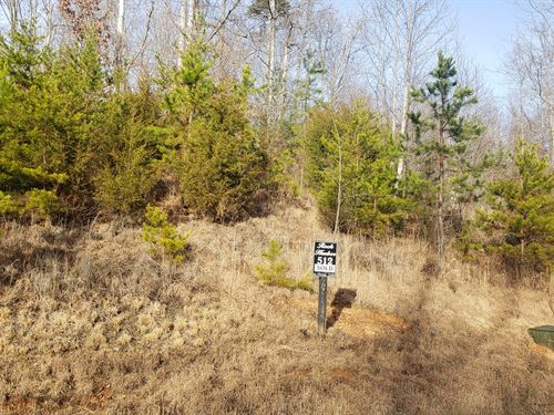 3/4 Acre Lot in Rock Harbor : New Tazewell : Claiborne County : Tennessee
