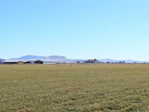 Certified Organic Farm : Tulelake : Modoc County : California