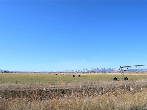 Tulelake Organic Farm : Tulelake : Modoc County : California