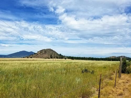 Grazing and Farmland : Chiloquin : Klamath County : Oregon