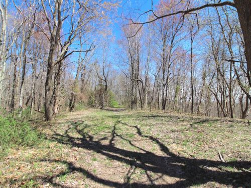 Twp Hwy 175, 61 Acres : Pomeroy : Meigs County : Ohio