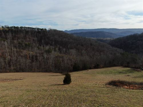 East Tennesse-Unrestriced Acreage : Tazewell : Claiborne County : Tennessee