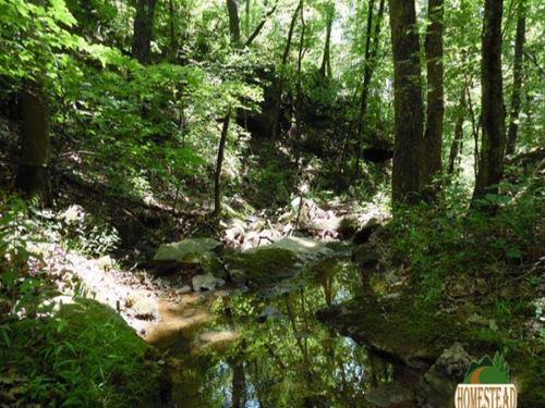 Wonderful Property With Spring-Fed : Mountainburg : Crawford County : Arkansas