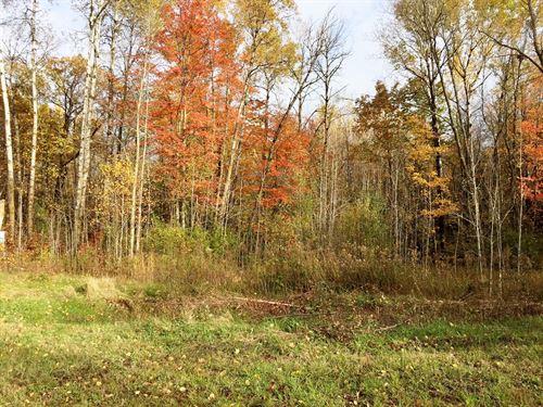 2 Acre Buildable Lot Minnesota : Sandstone : Pine County : Minnesota