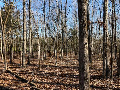 Land, Harrison Rd, Brooksville, MS : Brooksville : Noxubee County : Mississippi