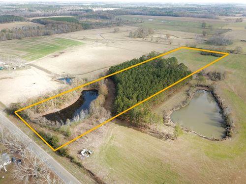 Home Site, Land Slocomb, Alabama : Slocomb : Geneva County : Alabama