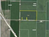 72 Acre Edinburg Christian County : Edinburg : Christian County : Illinois