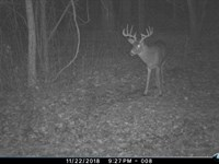 World Class Monster Buck Hunting : Steuben : Crawford County : Wisconsin