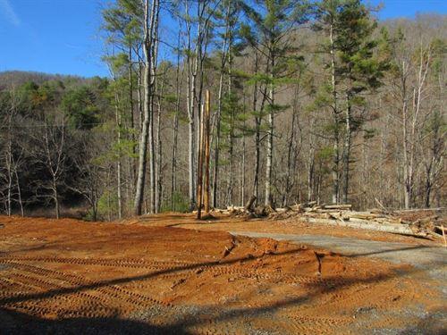 Building Lot in Floyd County VA : Check : Floyd County : Virginia