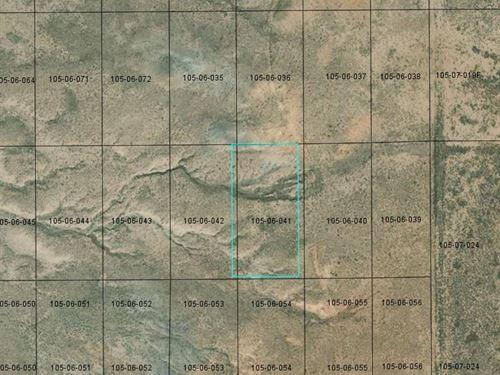 1.25 Acres in Navajo County AZ : Sun Valley : Navajo County : Arizona