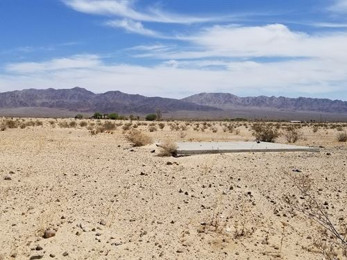 Beautiful Lot, Views, Pad, $225/Mo : Wonder Valley : San Bernardino County : California