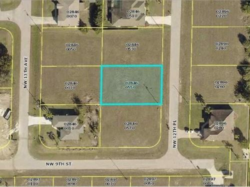 Awesome Cape Coral Lot : Cape Coral : Lee County : Florida
