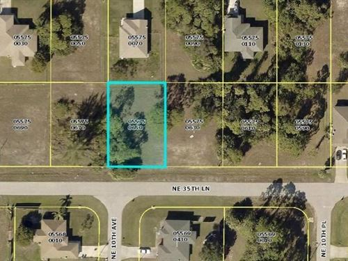 Very Nice Lot in Cape Coral : Cape Coral : Lee County : Florida