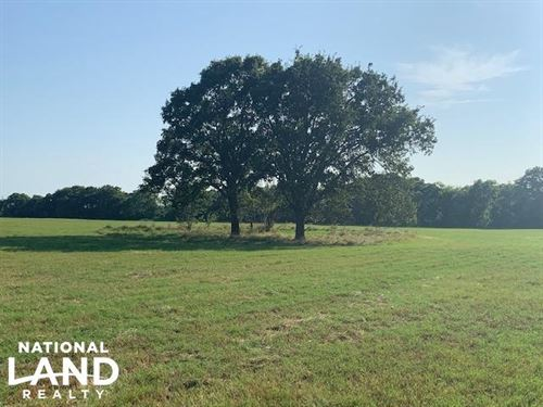 11.2 Acre Building Site And Hay : Eustace : Henderson County : Texas