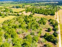 2.0 Acres Minerals & Unrestricted : Hallettsville : Lavaca County : Texas