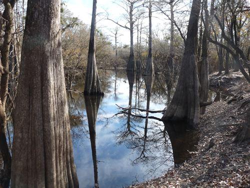 Jeffries Creek : Pamplico : Florence County : South Carolina