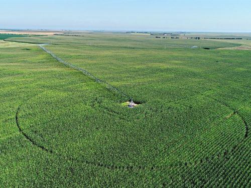 County Line Irrigated Quarters : Paxton : Perkins County : Nebraska