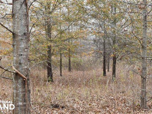 Poverty Point Crp Hunting Tract : Delhi : Richland Parish : Louisiana
