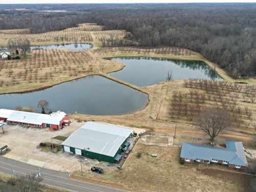 Coming to Auction is The Former : Troy : Obion County : Tennessee