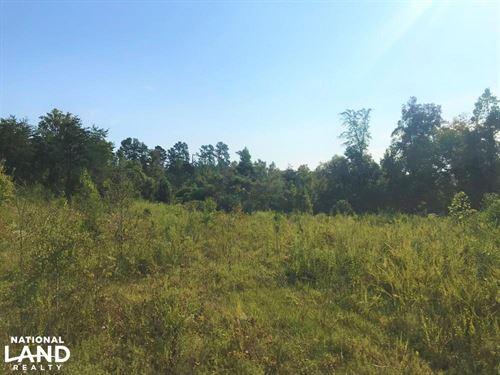 Keener Creek Vacant Land : Toccoa : Stephens County : Georgia