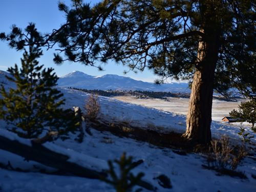Trees and Million $ Views, 6 Acres : Hartsel : Park County : Colorado
