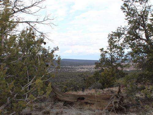 Acreage Septic Water Tank Seligma : Seligman : Yavapai County : Arizona