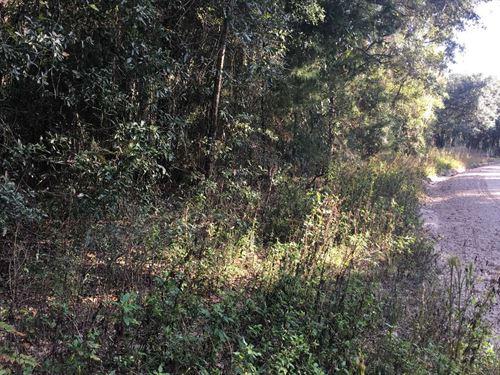 Nice Subdivision, Stick Built : Live Oak : Suwannee County : Florida