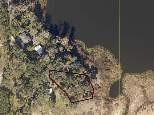 Very Wooded Lake Front Lot : Live Oak : Suwannee County : Florida